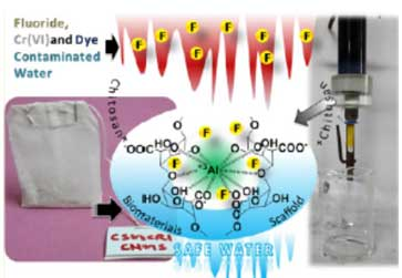 carbon and sulphur doped - nanocomposites
